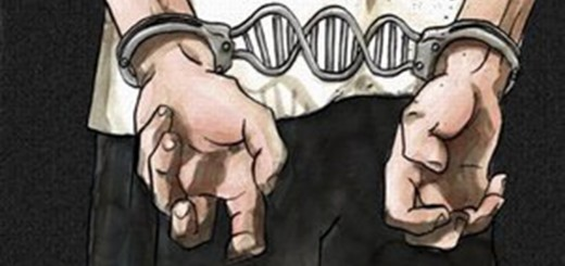 Verhaftung - Arrest - DNA